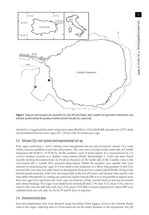 Volcanic CO2 vent system and experimental set-up   Page 4
