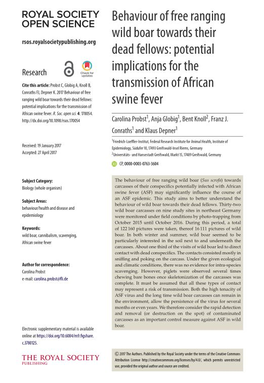 Behaviour of free ranging wild boar towards their dead fellows: potential implications for the transmission of African swine fever