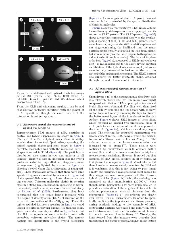 Microstructural characterizations of hybrid suspensions   Page 8