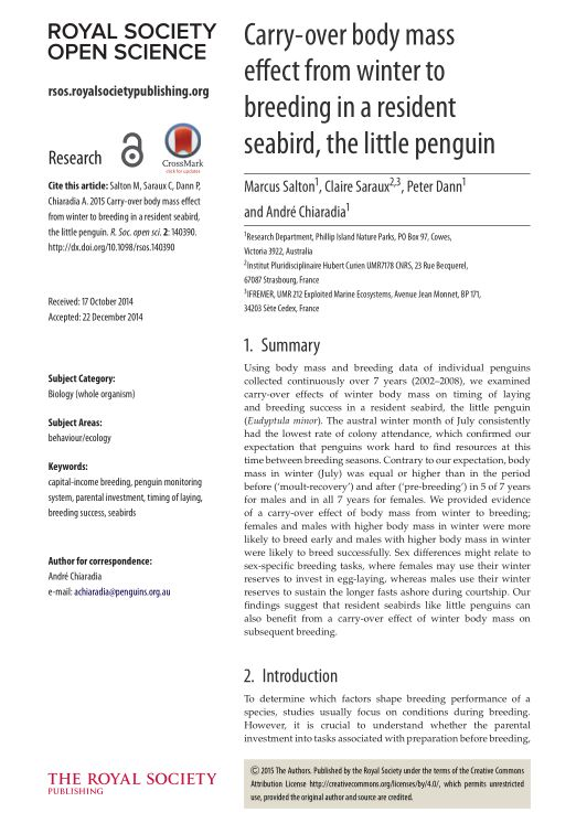 Carry-over body mass effect from winter to breeding in a resident seabird, the little penguin