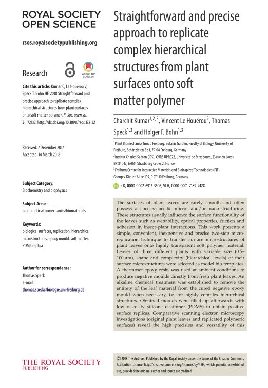 Straightforward and precise approach to replicate complex hierarchical structures from plant surfaces onto soft matterpolymer