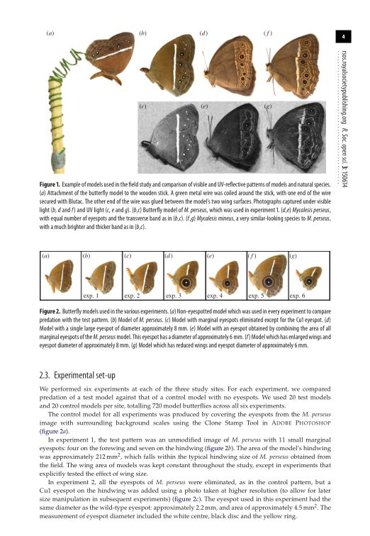 Experimental set-up | Page 3