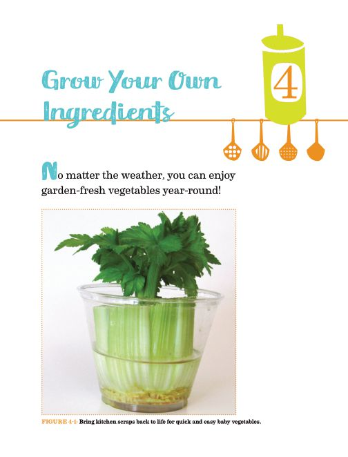 Chapter 4: Grow Your Own Ingredients | Page 8