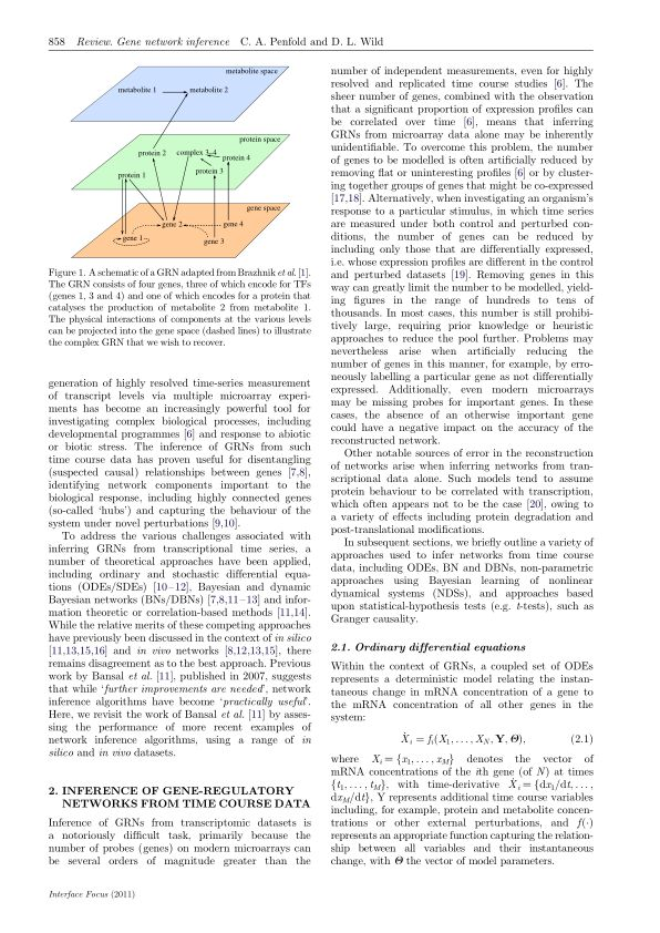 Inference of gene-regulatory networks from time course data | Page 0