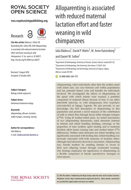 Alloparenting is associated with reduced maternal lactation effort and faster weaning in wild chimpanzees