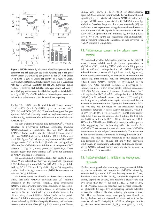NMDA-induced currents in the calyceal nerve terminal | Page 9