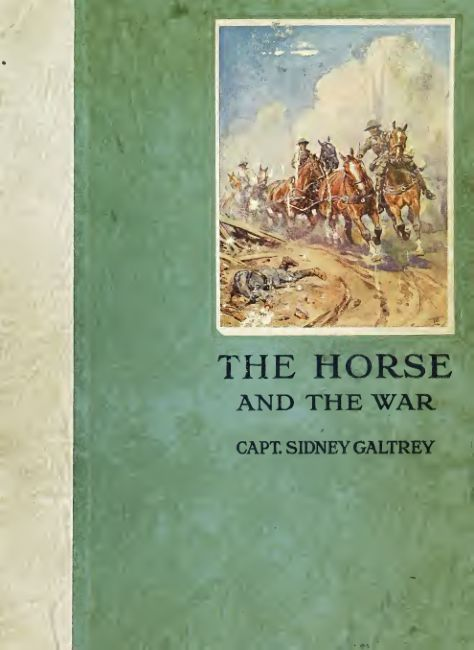 The horse and the war