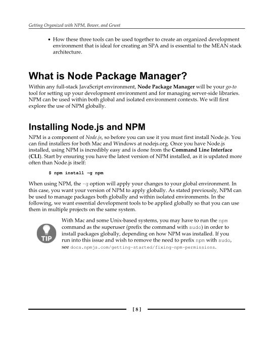 What is Node Package Manager? | Page 9