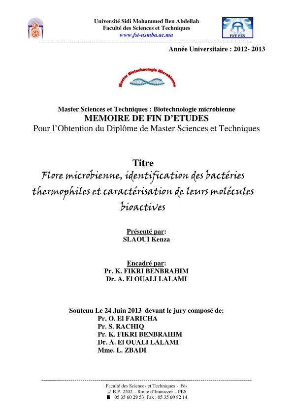 Couverture finale PFE Master 12 13 _1_