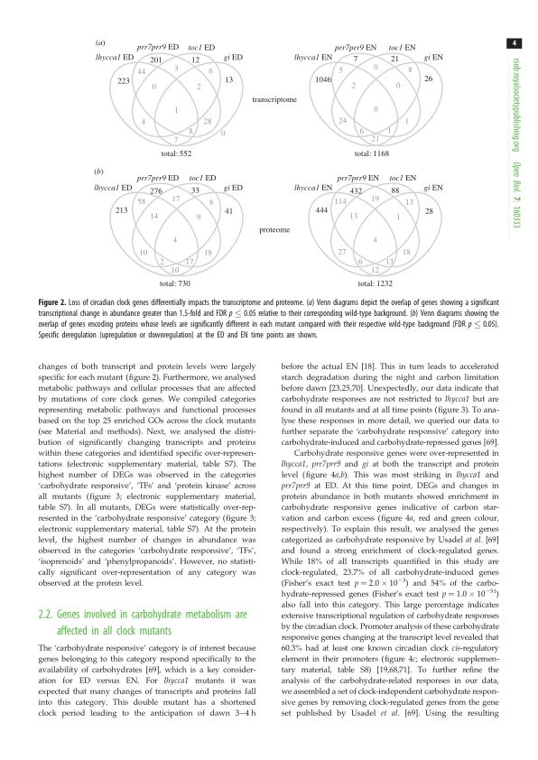 Genes involved in carbohydrate metabolism are affected in all clock mutants   Page 2