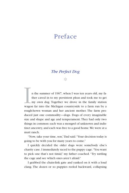 Preface: The Perfect Dog | Page 4