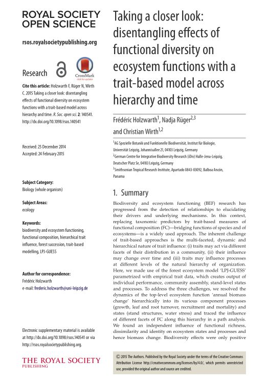 Taking a closer look: disentangling effects of functional diversity on ecosystem functions with a trait-based model across hierarchy and time