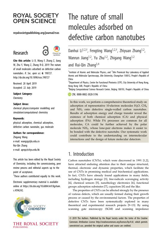 The nature of small molecules adsorbed on defective carbon nanotubes