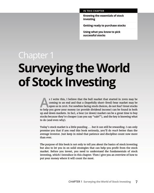 Chapter 1 Surveying the World of Stock Investing | Page 10