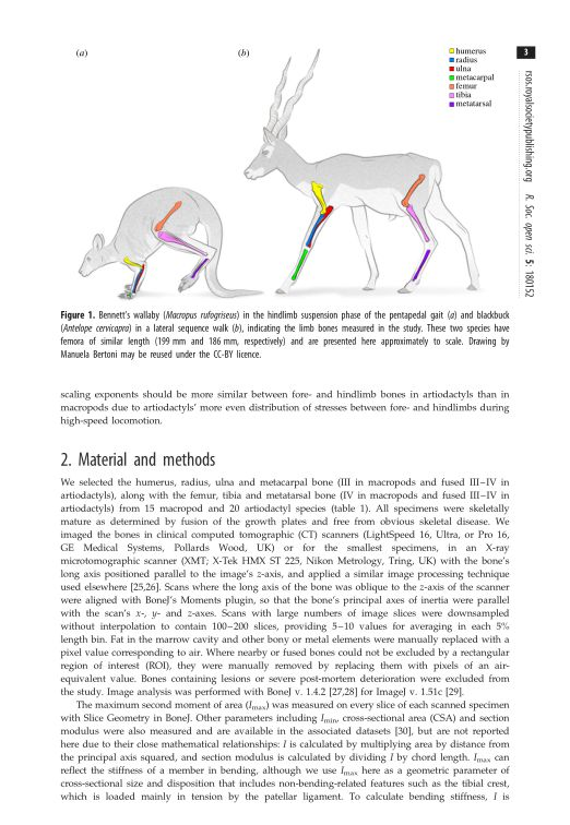 Material and methods | Page 1