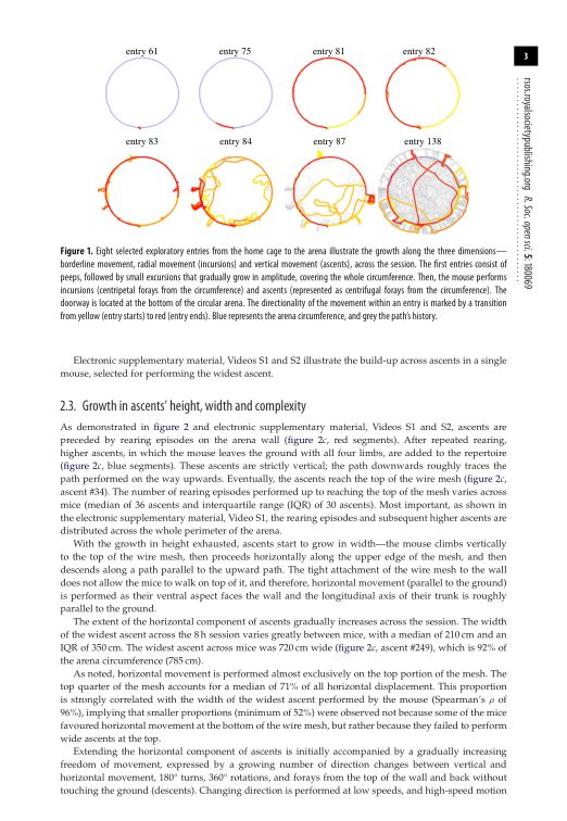 Growth in ascents' height, width and complexity   Page 3