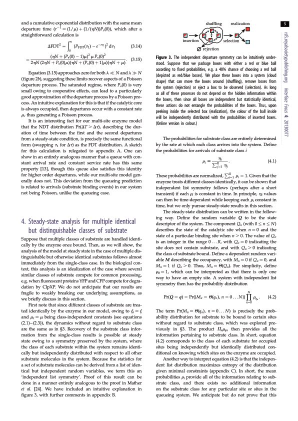 Steady-state analysis for multiple identical but distinguishable classes of substrate | Page 5