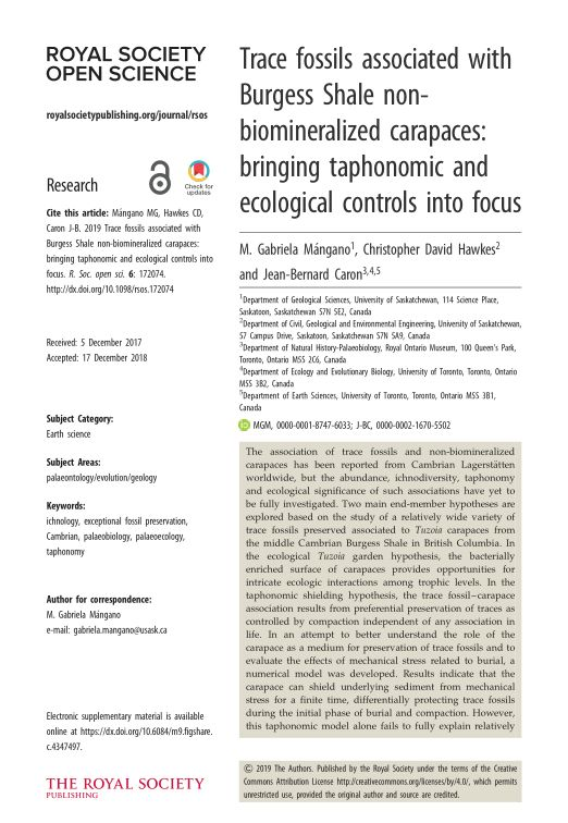 Trace fossils associated with Burgess Shale non-biomineralized carapaces: bringing taphonomic and ecological controls into focus