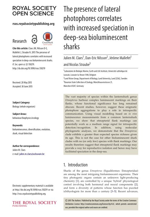 The presence of lateral photophores correlates with increased speciation in deep-sea bioluminescent sharks