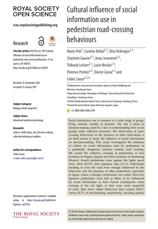 Cultural influence of social information use in pedestrian road-crossing behaviours